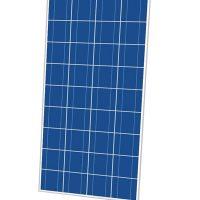 Cinco 160W 36 Cell Poly Solar Panel